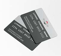 Briggs and Stratton Credit Card