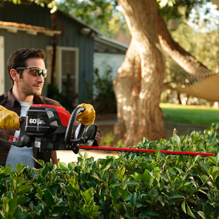 60Volt Max LithiumIon Cordless Hedge Trimmer